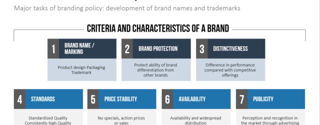 Brand Vision Statement